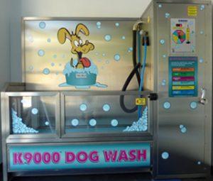 dogwash2